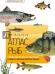 Книги про рыбалку