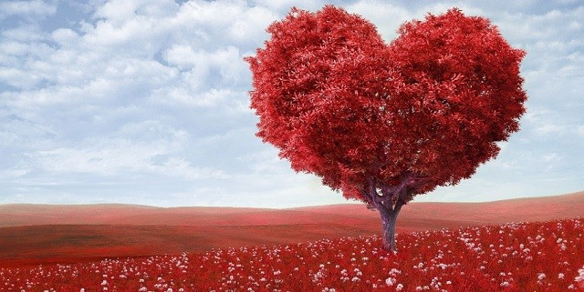 Лучшие книги про любовь и страсть